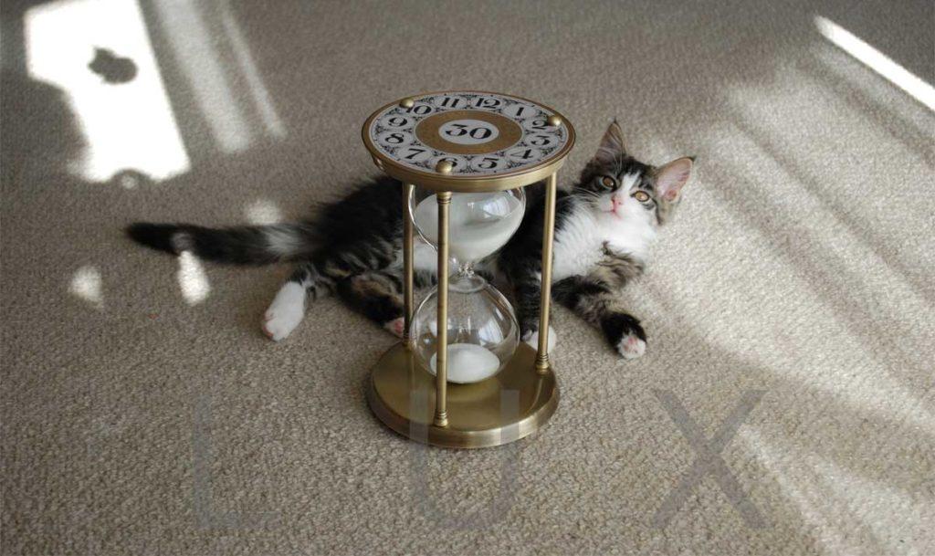 Messing Sanduhr mit Katze